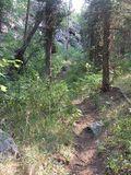 09 Trail 1